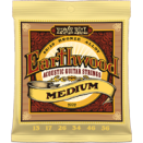 Ernie Ball - Earthwood 80/20 Brons Medium 013-056