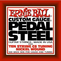 Ernie Ball EB-2501